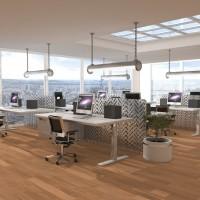 Economie d'énergie : L'éclairage LED pour les entreprises