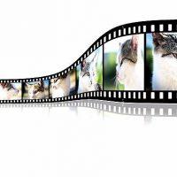 Pourquoi inclure une vidéo dans une stratégie de communication