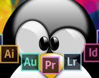 Les logiciels de la suite Adobe